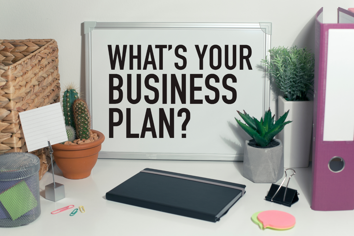 whats your business plan